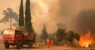 EU firefighters sent to Turkey to help fight forest blazes that have claimed 8 lives